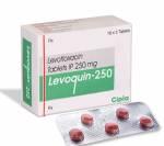 Levoquin 250 mg (5 pills)